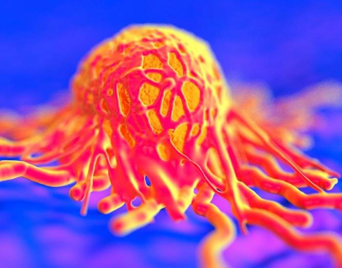 Рак, тумори и злокачествени заболявания – физиологичната логика